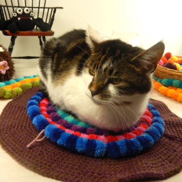 cat-pompom