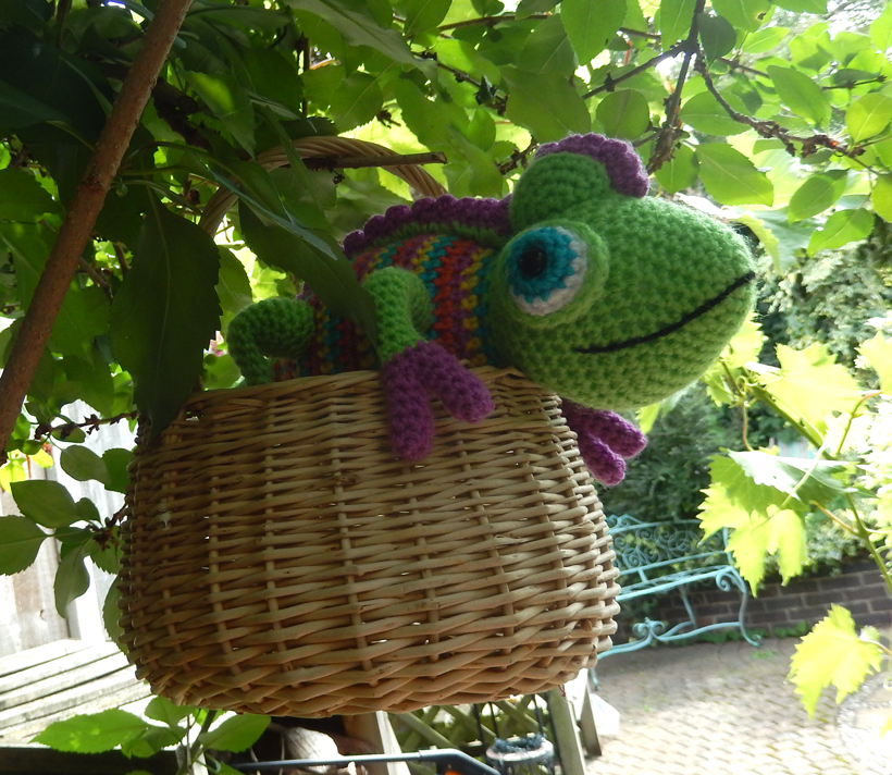 chameleon-in-the-shade