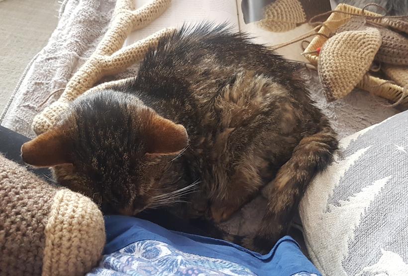 tigger-snuggles