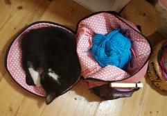 Rubick-in-the-crochet-bag
